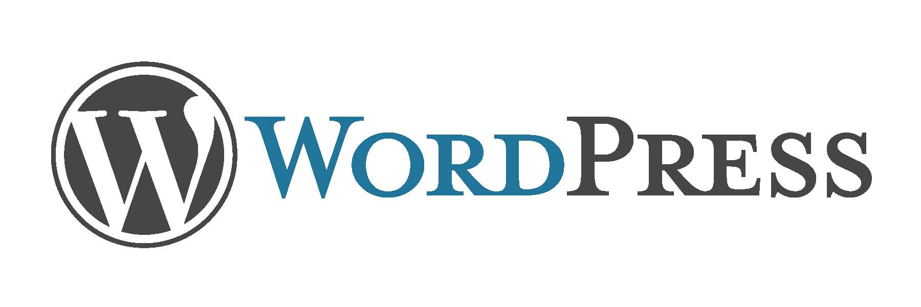 Become a WordPress Pro – A Guide With Everything You Need to Know